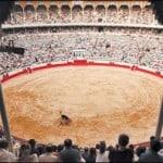 Arena Monumental (foto)