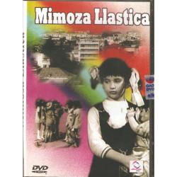 Mimoza LLastica, Xhanfize Keko