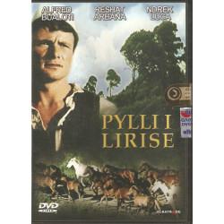 Pylli i Lirise (Film DVD), Gezim Erebara
