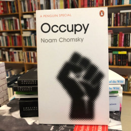 Occupy, Noam Chomsky