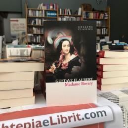 Madame Bovary, Gustave...