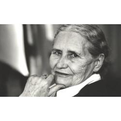 Vera para erresires, Doris Lessing