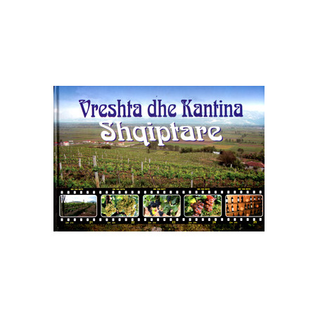 Vreshta dhe Kantina Shqiptare, Andrea Shundi
