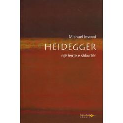 Heidegger, Nje hyrje e shkurter, Michael Invood