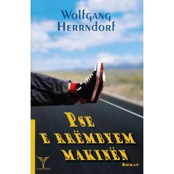 Pse e rrembyem makinen, Wolfgang Herrndorf