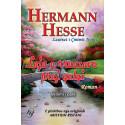 Loja e rruazave prej qelqi, Hermann Hesse, vol. 1