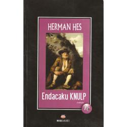 Endacaku Knulp, Herman Hes