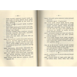 Fjalori i Gazullit, Nikoll Gazulli