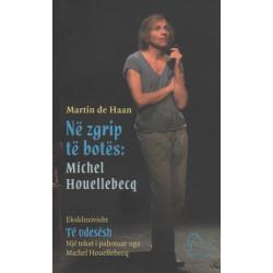 Ne zgrip te botes: Michel Houellebecq, Martin de Haan