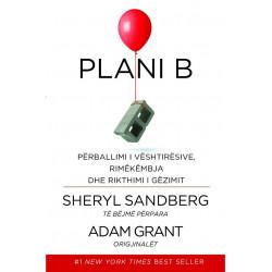 Plani B, Sheryl Sandberg, Adam Grant