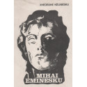 Jeta e Mihai Eminesku, Xheorxhe Kelinesku