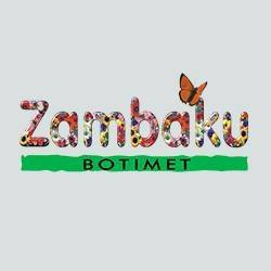 Zambaku